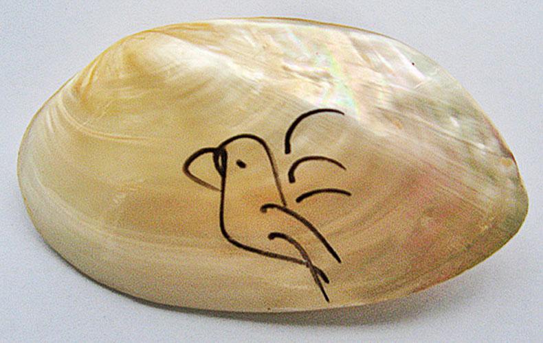 ckg-bird-mussle