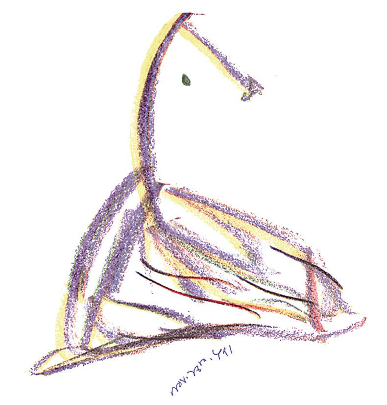 Bird-26-11-1991-4