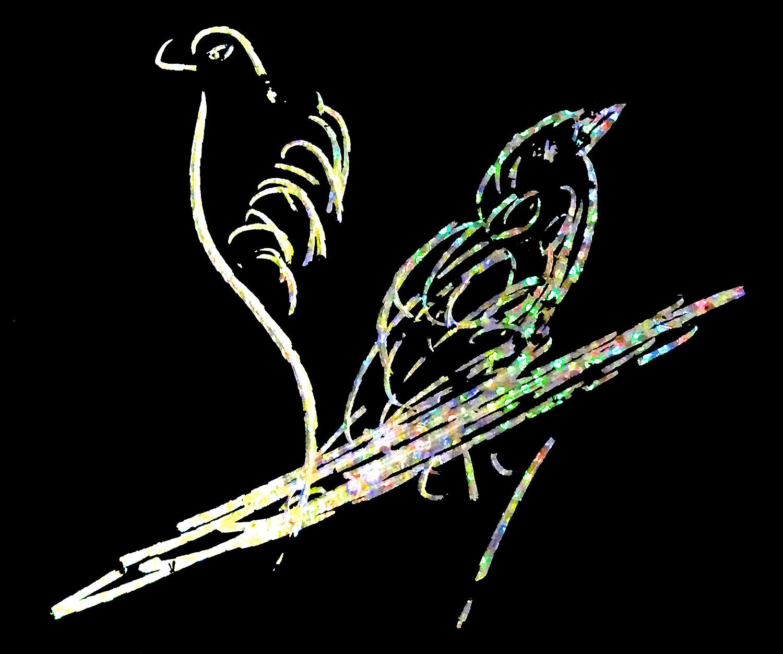 Black-Bird-CKG-04