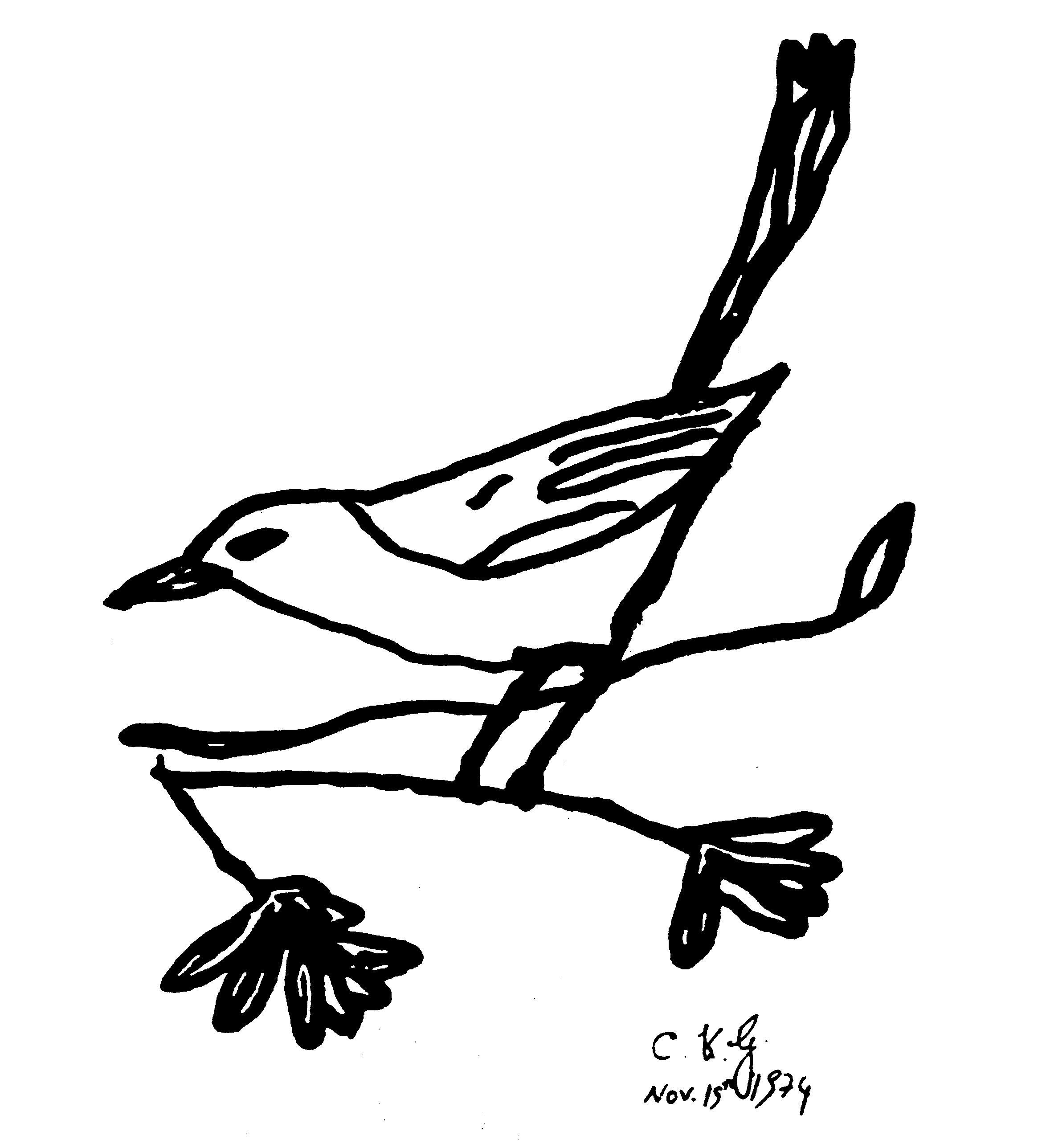 19-11-1974-ckg-bird