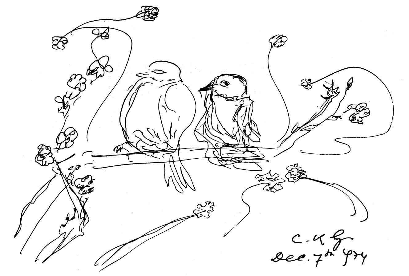 7-12-1974-birds-ckg
