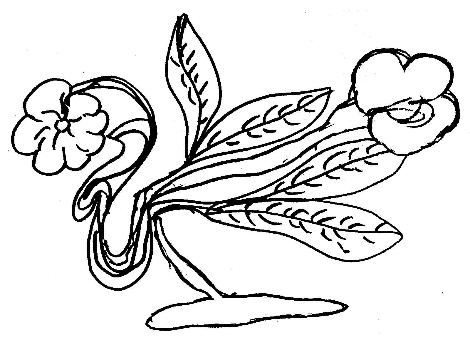flower34-145-ckg