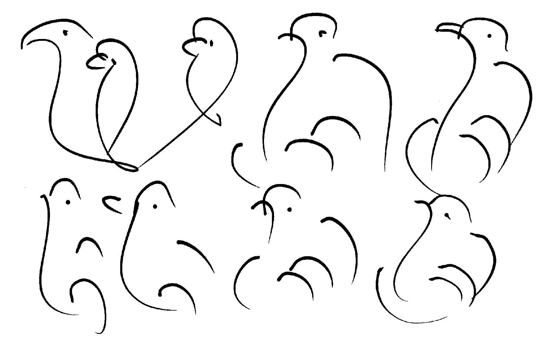 176-birds-ckg