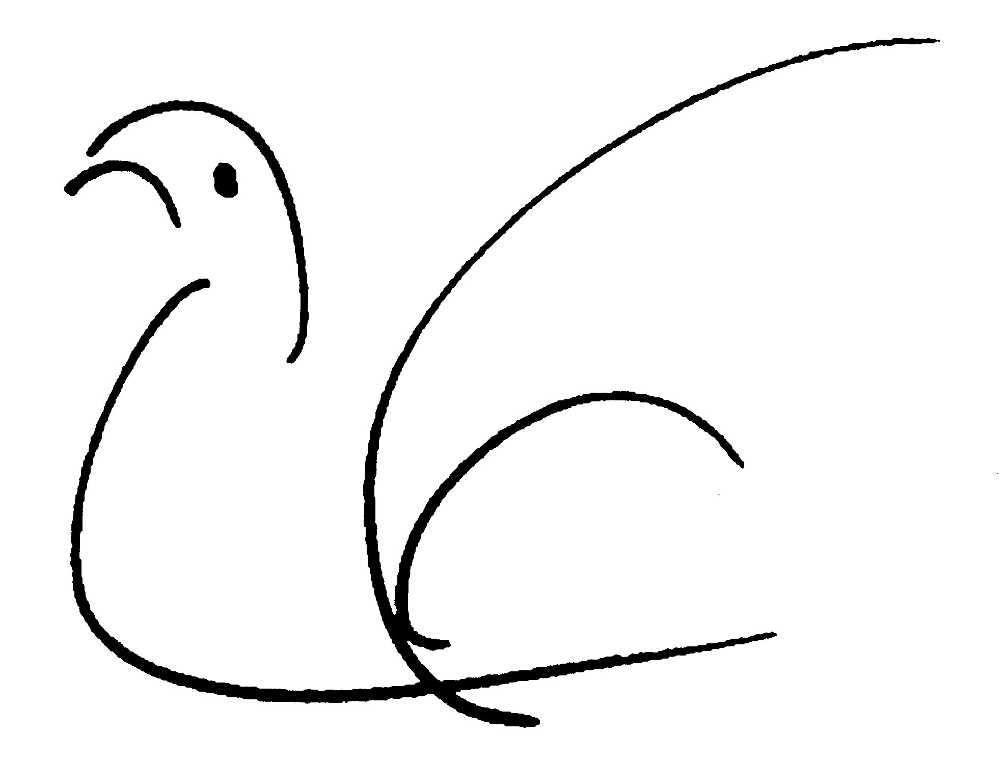 181-ckg-bird