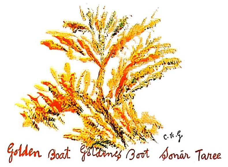 Golden-Boat-sri-chinmoy