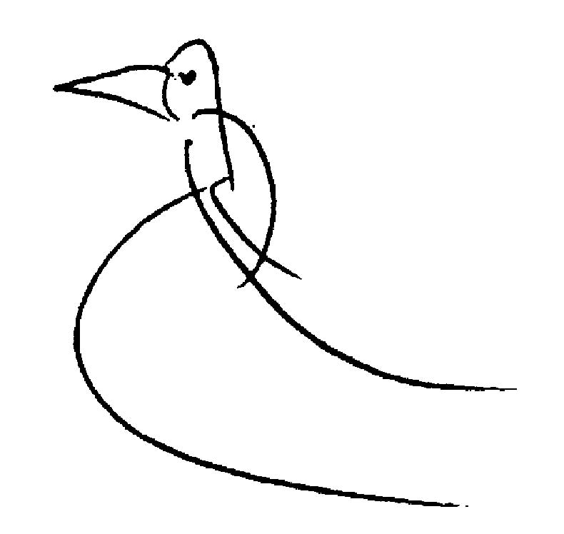 Bird-Drawing-by-Sri-Chinmoy-undated-327