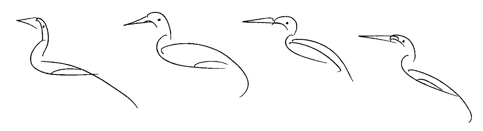 _Bird-Drawing-by-Sri-Chinmoy-undated-328