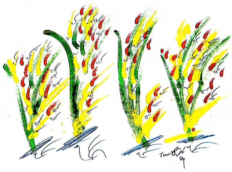 29-6-2005-sri-chinmoy